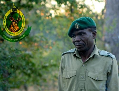 Réserver les campsites au Zimbabwe