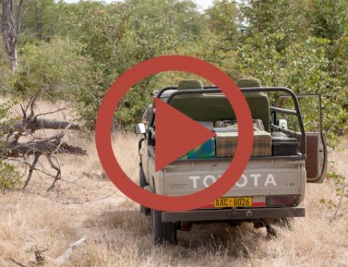 On the road [Vidéo]