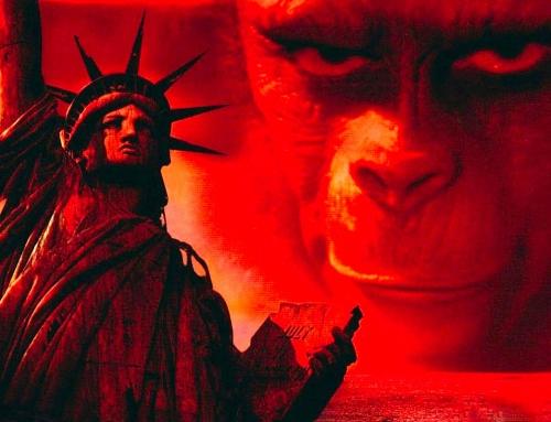 Les grands singes à l'affiche … souvenez-vous !