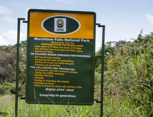 Parcs nationaux et campsites : comment réserver en Ouganda et au Rwanda ?