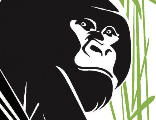 Bravo Méthode et longue vie aux Gorilla Doctors !