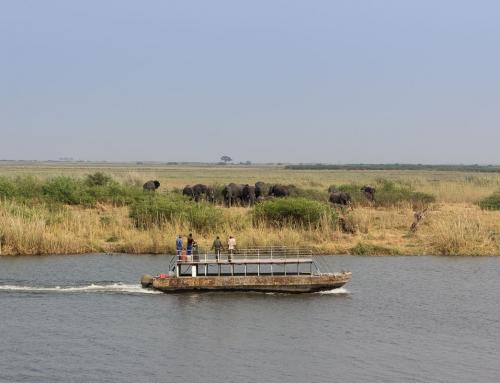 Mission repos : Escapade en Namibie (sur l'île d'en face)