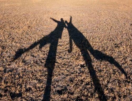 Bostwana côté désert : Central Kalahari, Deception Valley (Jour 4)