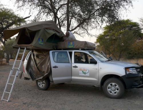 Recherche 4×4 désespérement au Zimbabwe