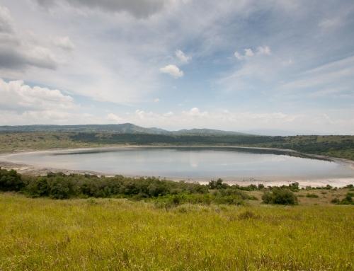 De Fort Portal à Mweya, par delà l'équateur …