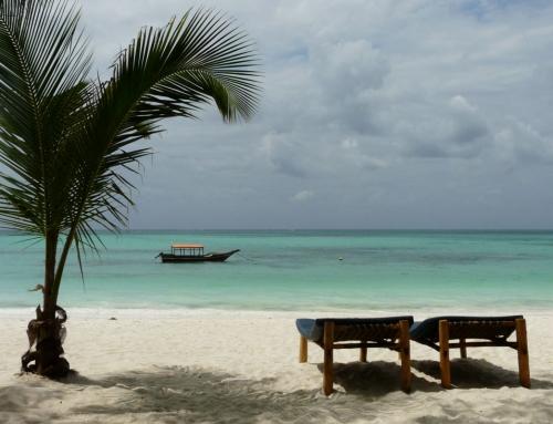 Carnet d'images de Tanzanie : Arusha & Zanzibar