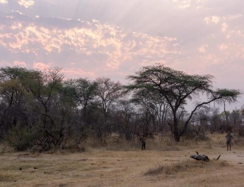 Mission léo : Sur les sentiers des premiers géomètres