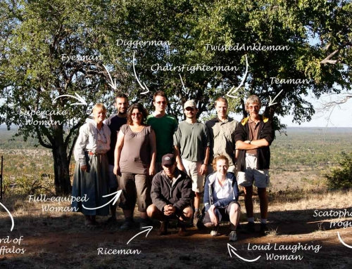 Mission d'écovolontariat : Transect au Zambezi National Park (1)