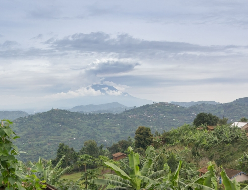 Au bord du lac Kivu, de Gisenyi à Kibuye
