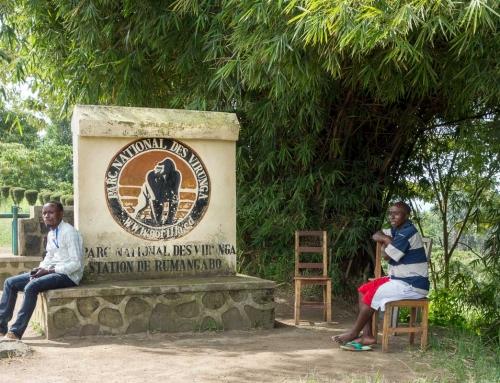 Dans les coulisses des Virunga