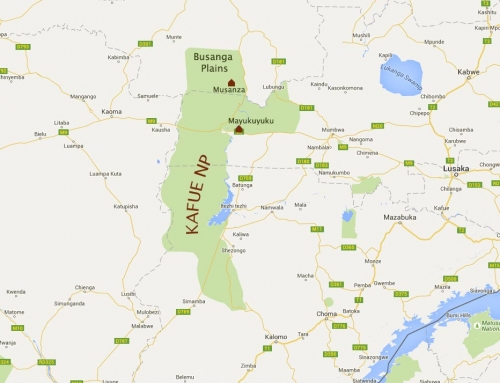 Fermeture de Lufupa Campsite à Kafue