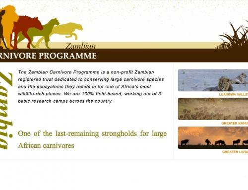 Profitez du voyage pour aider Zambia Carnivores !