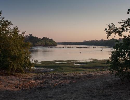 Zambie : De Lusaka à Mayukuyuku (Kafue NP)