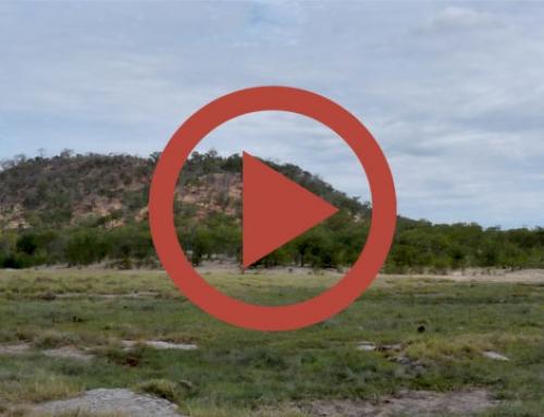 Il ne pleut jamais en mai au Zimbabwe [Vidéo]