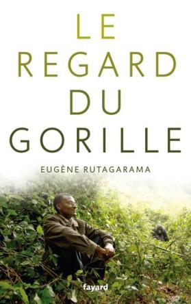 regard-gorille couv