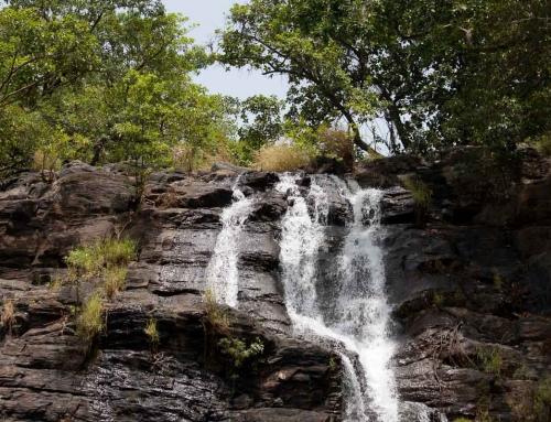 Carnet d'images du Bénin : A la cascade de Tanongou