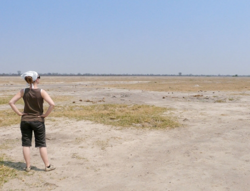 La traversée du Savuti Marsh
