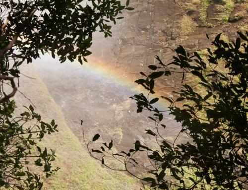 Premier jour au Zimbabwe : Avis de tempête sur les chutes Victoria !
