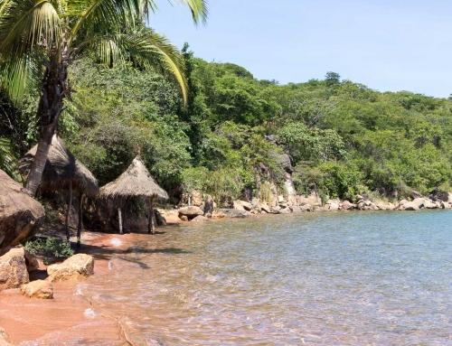 Kigoma, Kabirizi & Ujiji : le Tanganyika du Nord tanzanien